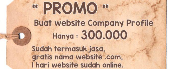 Promo Imlek Jasa Pembuatan Website Company Profile