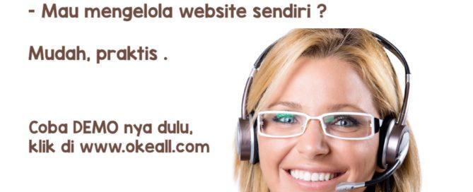 Demo Website Di JualON.com , Tampilan Depan Dan Admin
